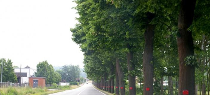 legambientevaltriversa-alberistatale