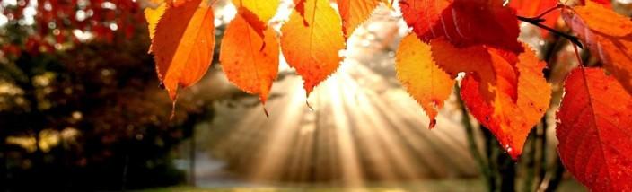 i-colori-dell-autunno-2014-legambiente-valtriversa
